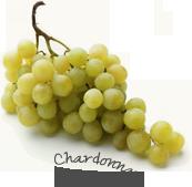 Vins de Beaujolais